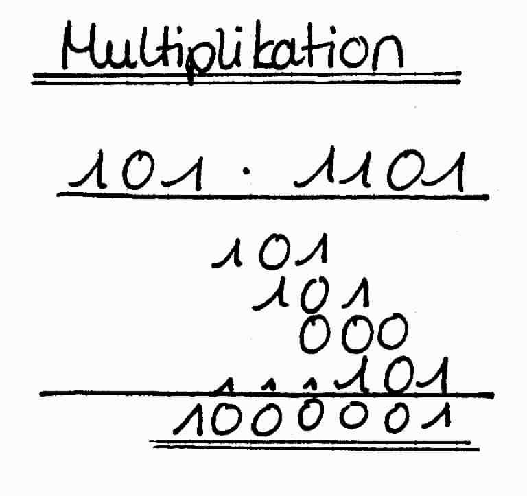 division im or her dualsystem beispiel essay